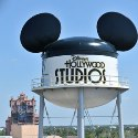 Disney Hollywood